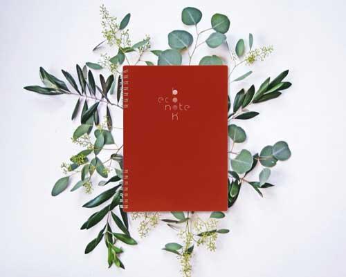 Cahier spirale A5 rouge Econotebk sur eucalyptus