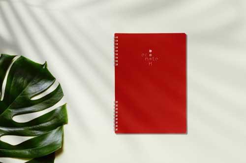 Cahier spirale réutilisable B5 rouge Econotebk
